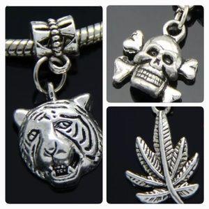 Jewelry - Skull, lion head, maple leaf silver dangle charm